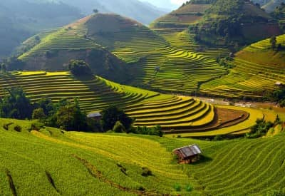 Mu Cang Chai - Pristine and amazing land in Vietnam