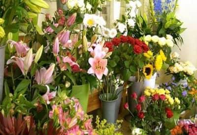 Top 5 shop hoa tươi Đà Lạt đẹp và nổi tiếng nhất